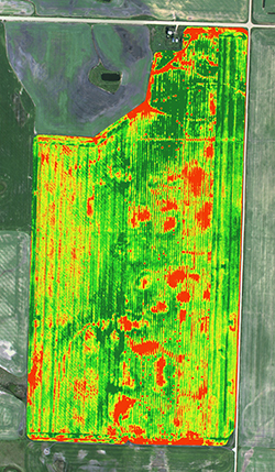 NDVI GIS precision agriculture imagery